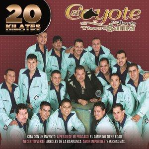 Image for '20 Kilates'