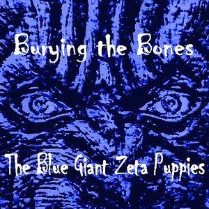 Bild für 'Burying The Bones'