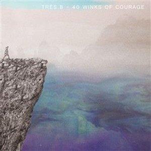 Immagine per '40 winks of courage'