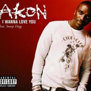 Image for 'Akon feat. Snoop Dogg'