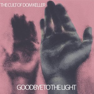 Image for 'Goodbye to the light'