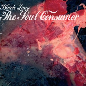 Image for 'The Soul Consumer'