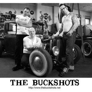 Image for 'The Buckshots'
