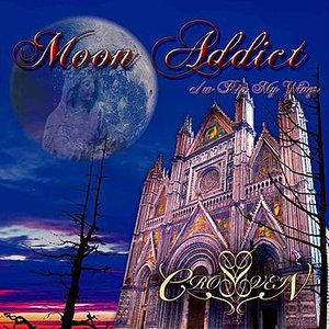 Image for 'Moon Addict'