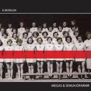 Bild für 'Á morgun'