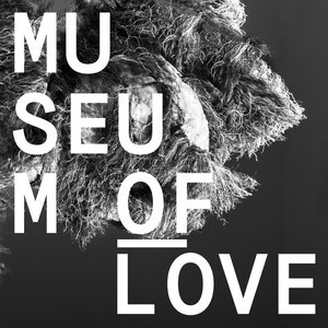 Image for 'Museum Of Love'