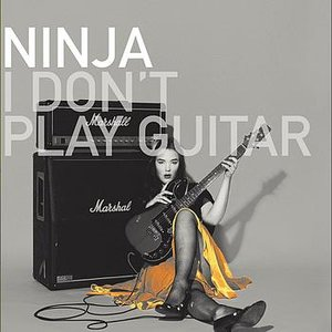 Image for 'I Don't Play Guitar'