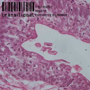 Image for 'Transitional  (A Mutagenic Ambient Experience)'