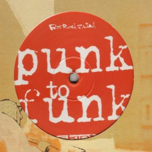 Image for 'Punk to Funk'