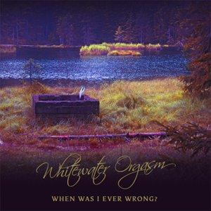 Bild för 'When Was I Ever Wrong'
