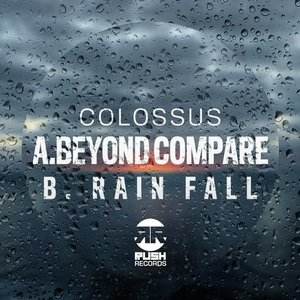 Image pour 'Beyond Compare / Rain Fall'