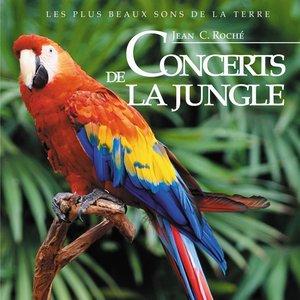 Image for 'Concerts de la jungle'
