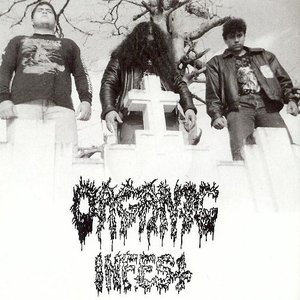 Image for 'Organic Infest'