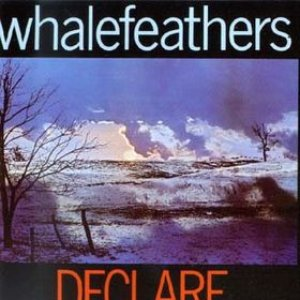 Image for 'Whalefeathers Declare'
