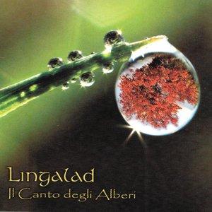 Image for 'Alba a Lago Vivo'