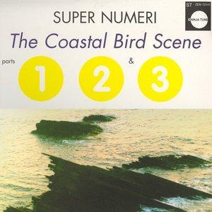 Image for 'The Coastal Bird Scene'