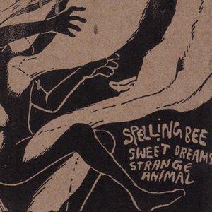 Image for 'Sweet Dreams, Strange Animal'