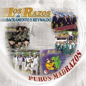 Image pour 'Puros Madrazos'