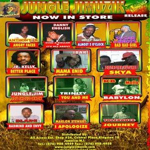 Bild für 'almost 2 o 'clock - jungle jimuzik'