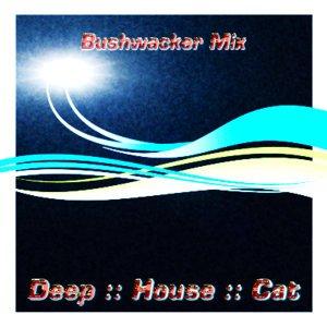 Image for 'November 2008 :: Cut 1 :: Bushwacker Mix'