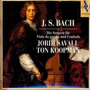 Image for 'Sonata III (G Moll) BWV 1029: Vivace (Bach)'