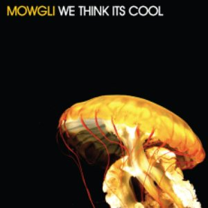 Image for 'We Think Its Cool'
