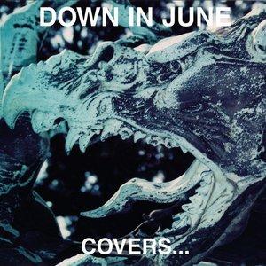 Immagine per 'Covers...'