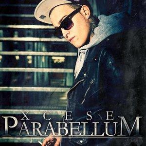 Imagem de 'Parabellum'
