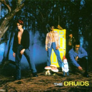 Image for 'The Druids'