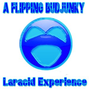 Image for 'Laracid Experience'