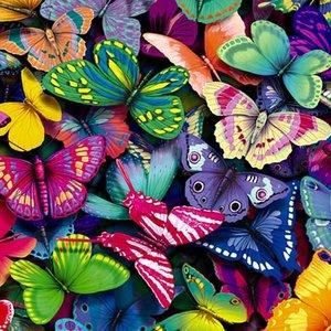 Изображение для 'Quantum Butterflies (part 1)'