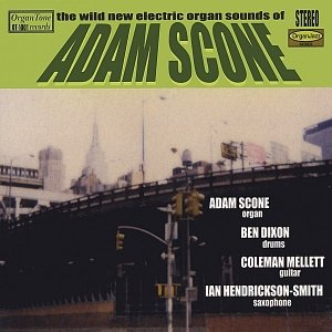 Image for 'The Wild New Electric Organ Sounds of Adam Scone'