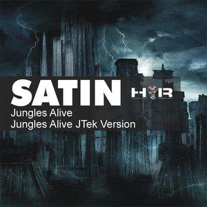 Image for 'Jungles Alive (JTek Version)'