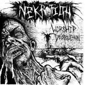 Image for 'Worship Destruction'