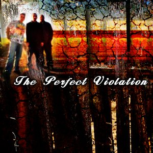 Image for 'The Perfect Violation'