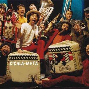 Image for 'シカラムータ'