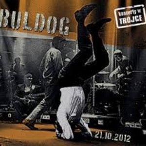 Image pour 'Koncerty w Trójce - Buldog'