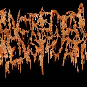 Image for 'Anorectal Menstruation'