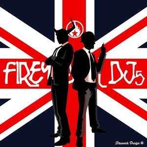Image for 'Firework Djs'