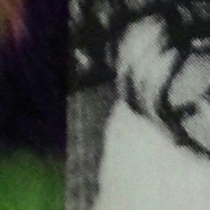 Bild för 'Fatso (single)'