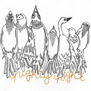 Image for 'NIghty Night Demos'