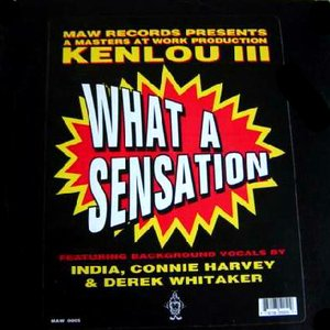 Image for 'What A Sensation'