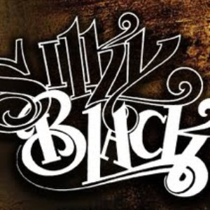 Image for 'Silky Black'