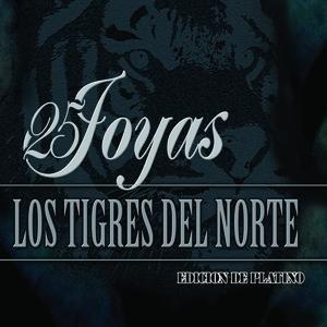 Image for '25 Joyas'