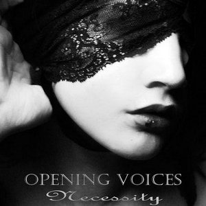 Image for 'Opening Voices'