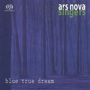 Image for 'blue true dream'