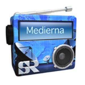 Image for 'SR P1 Medierna'