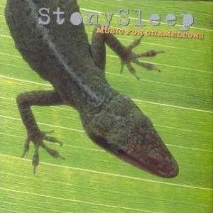 Image pour 'Music For Chameleons'
