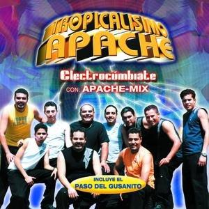 Bild für 'Electrocumbiate'