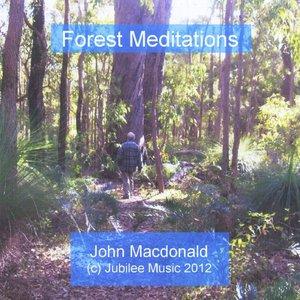 Image for 'Forest Meditations'